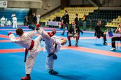 IRBIS TEAM VORONEZH - International Tournament- Karate for Peace