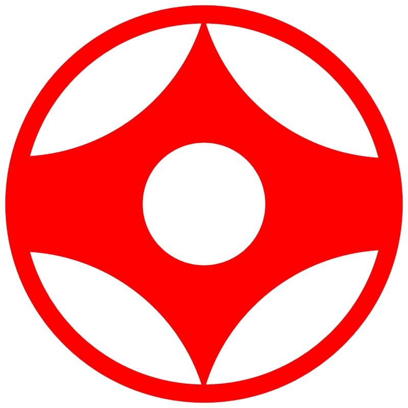 картинки киокусинкай каратэ