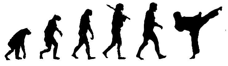 эволюция каратэ