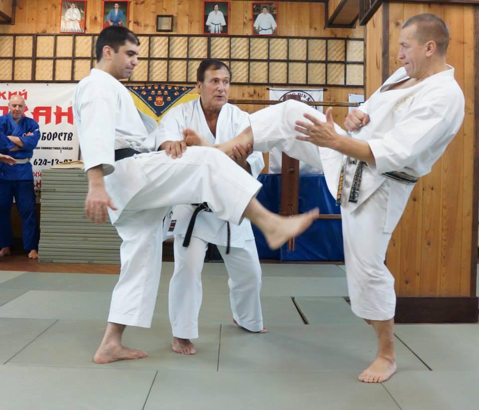 shotokan thesis