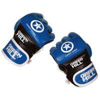 перчатки Боевое самбо и ММА натуральный кожа Грин Хилл синие
