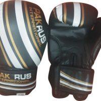 Перчатки детские боксёрские Pak Rus